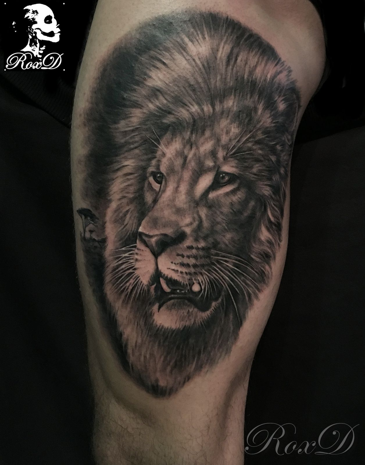 tatouage lion tattoo