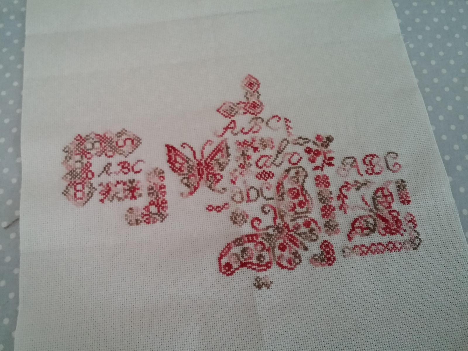 SAL sampler aux papillons.....5
