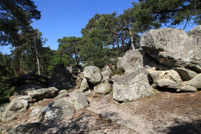 Forêt de Fontainebleau : en passant par la Croix du Calvaire, la Tour Denecourt, les fontaines et la roche Eponge