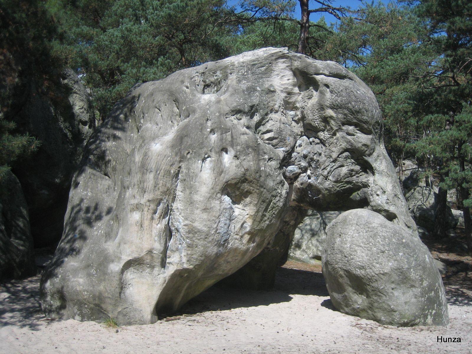 L'Elephant de Larchant