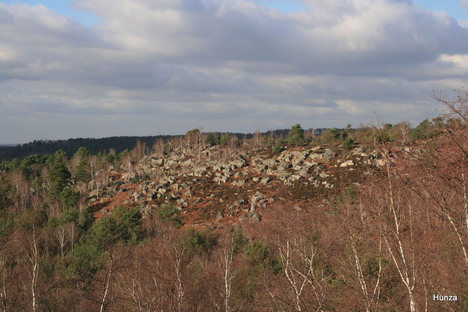 Point de vue sur les gorges d'Apremont