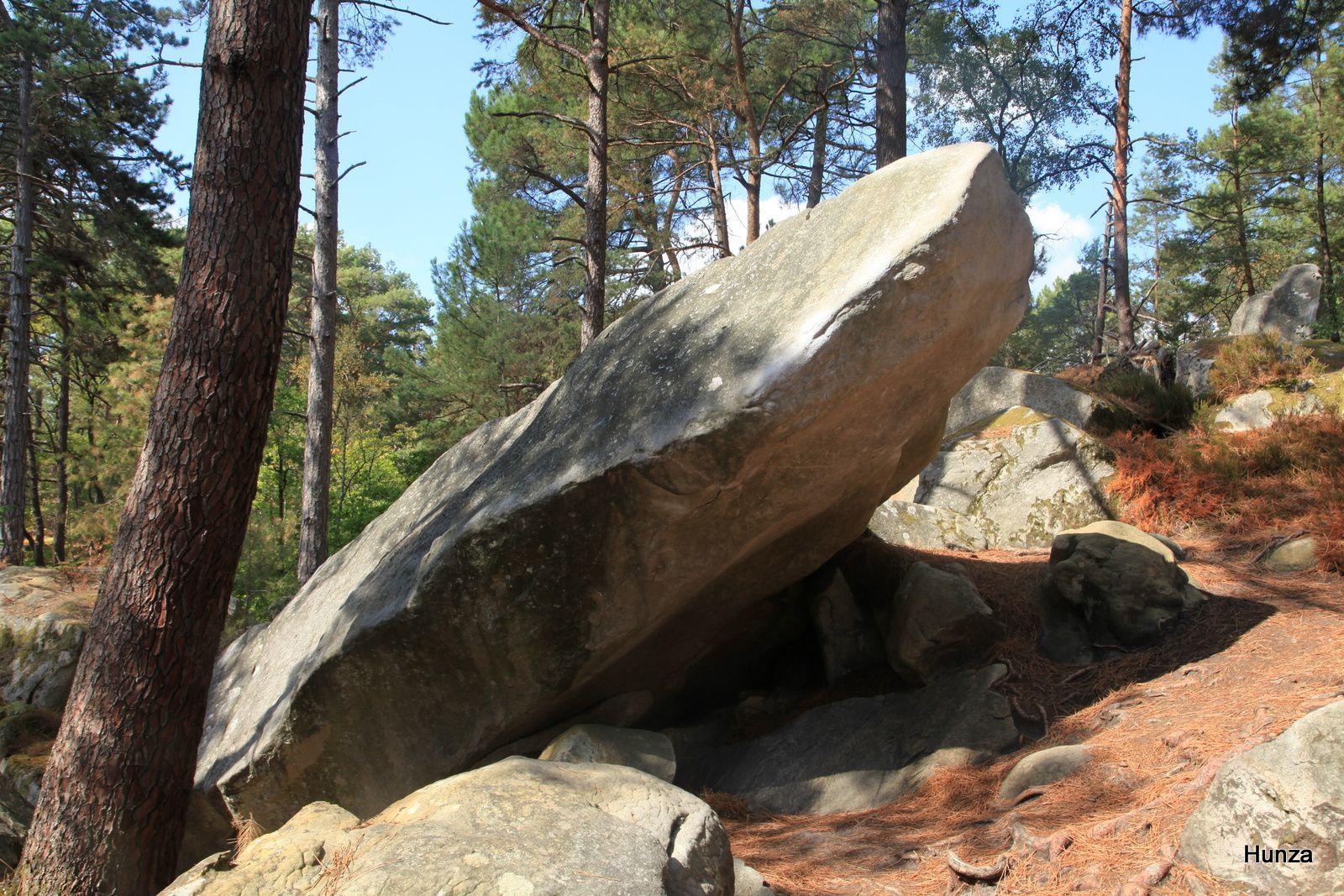 Une journée à Fontainebleau : visite du château et randonnée en forêt au Rocher d'Avon