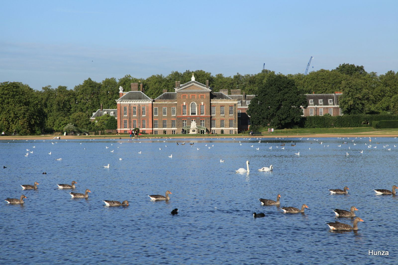 "Palais de Kensington et, au premier plan, le ""Round Pond"", bassin de forme octogonale"
