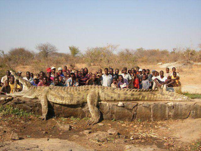 1 )L'étang . 2 ) Près du fleuve Niger. 3 ) Un hôte accueillant 4 ) Ils nous attendent demain.