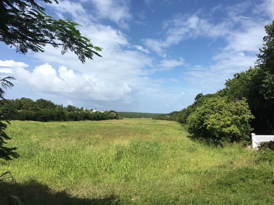 """Michel Corbin . / Divers paysages de Guadeloupe, pollués par """"l'écologisme"""" à tout crin de certains milieux. / En bonus quelques petits croquis plus ou moins amusant."""