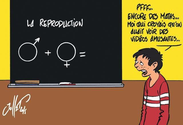 L'éducation sexuelle à l'école: Lettre à M Michel Blanquer. Tout, tout, tout, vous saurez tout sur le sujet (avec video à l'appui.).