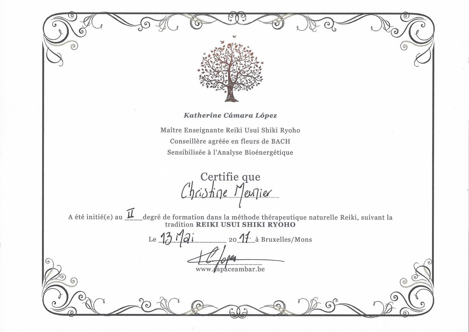 72 - Certification Reiki Usui Shiki Ryoho