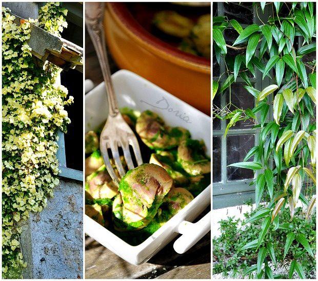 Rognons de veau et Gnocchis au jus de persil et ail