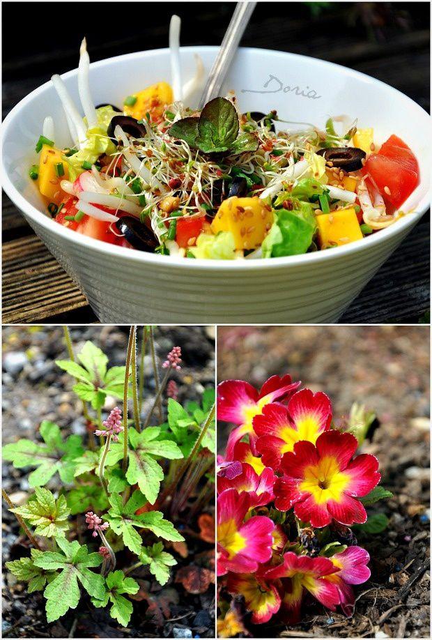 Salade gourmande et légère...