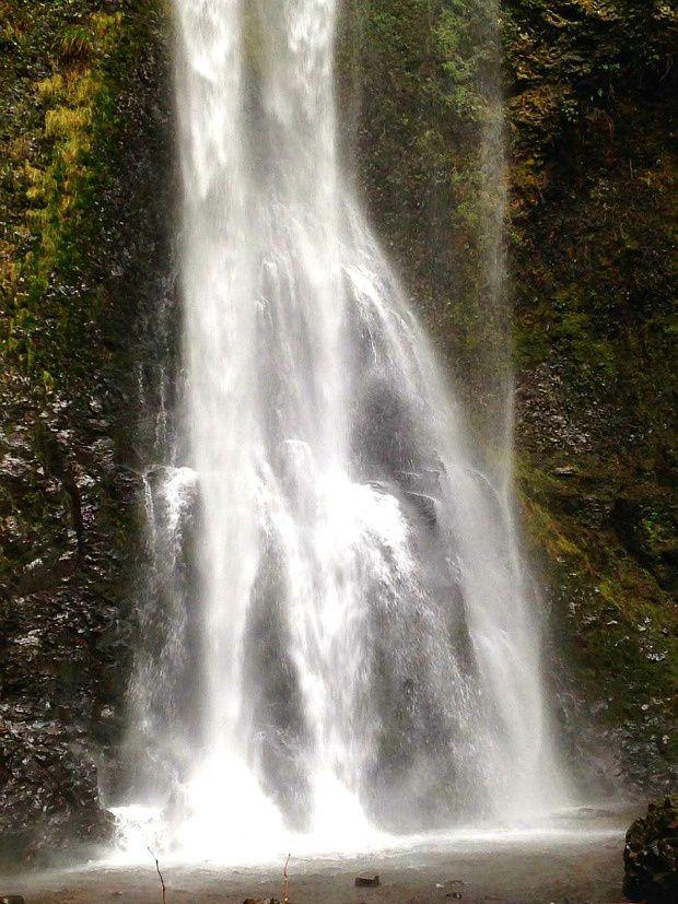 Doria aux Etats-Unis dans l'Oregon (2017 - 2)... South Falls Historic District
