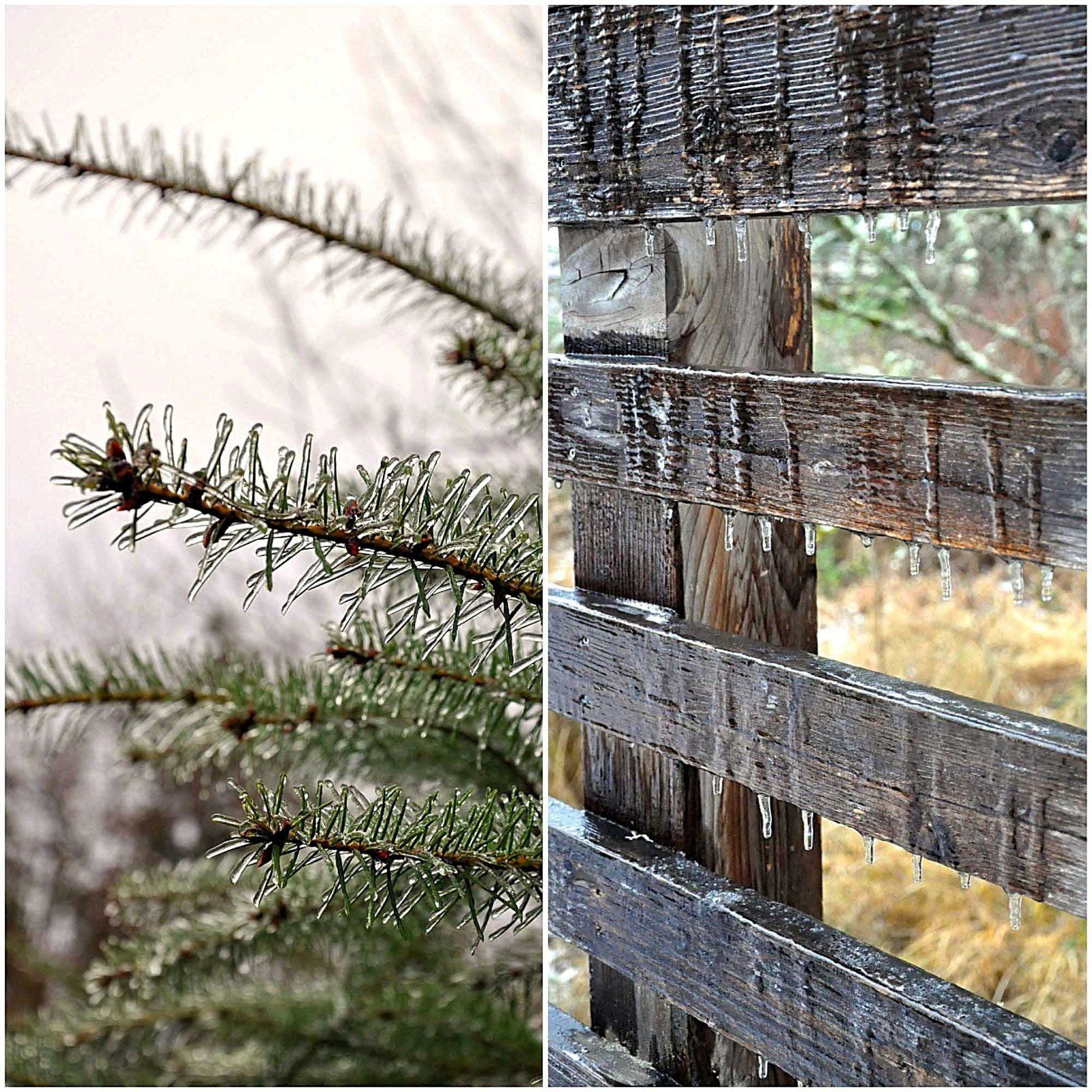 Voyage dans l'Oregon... Rock Creek Trail sur Hillsboro