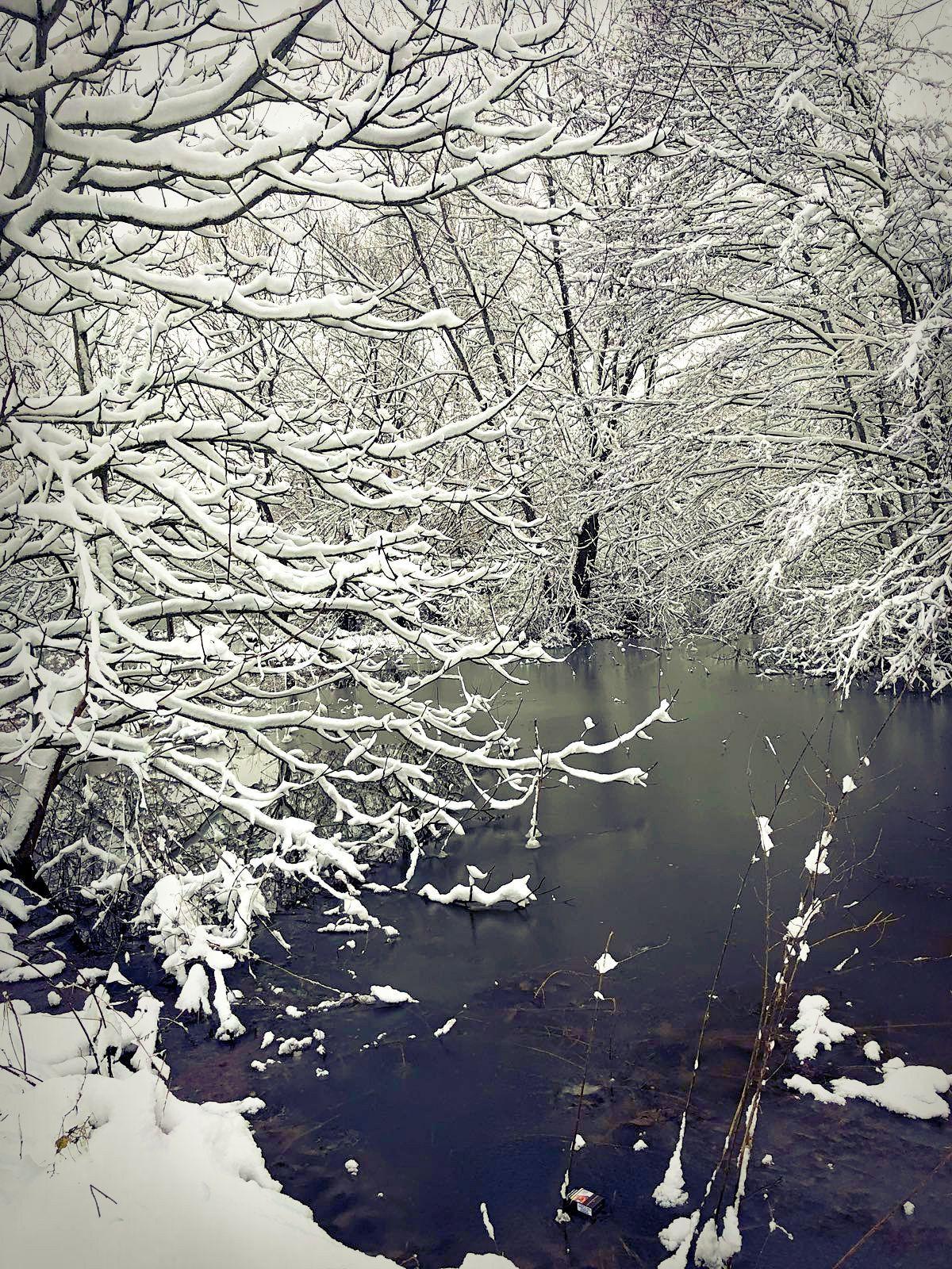 Meaux sous la neige (1)