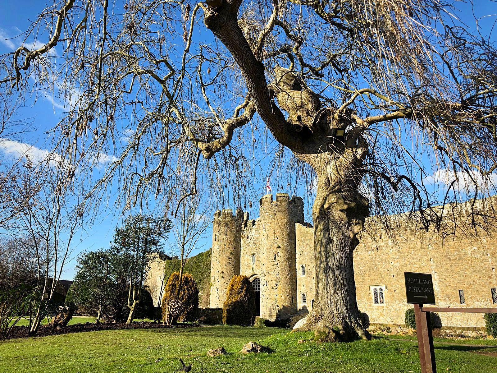Les voyages de Caroline...Château d'Amberley dans le Sussex, Angleterre