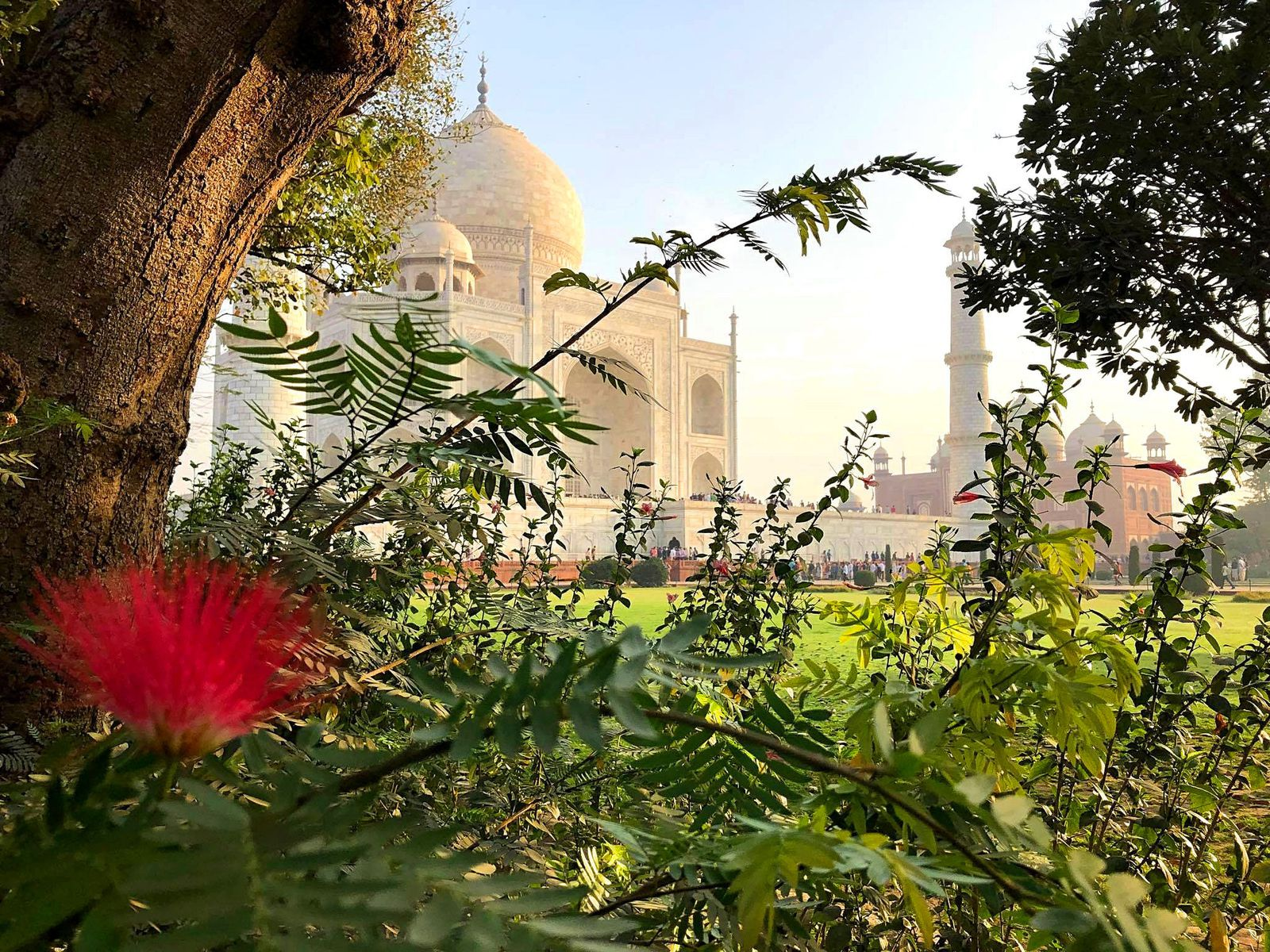 Les voyages de Caroline... Inde (2)
