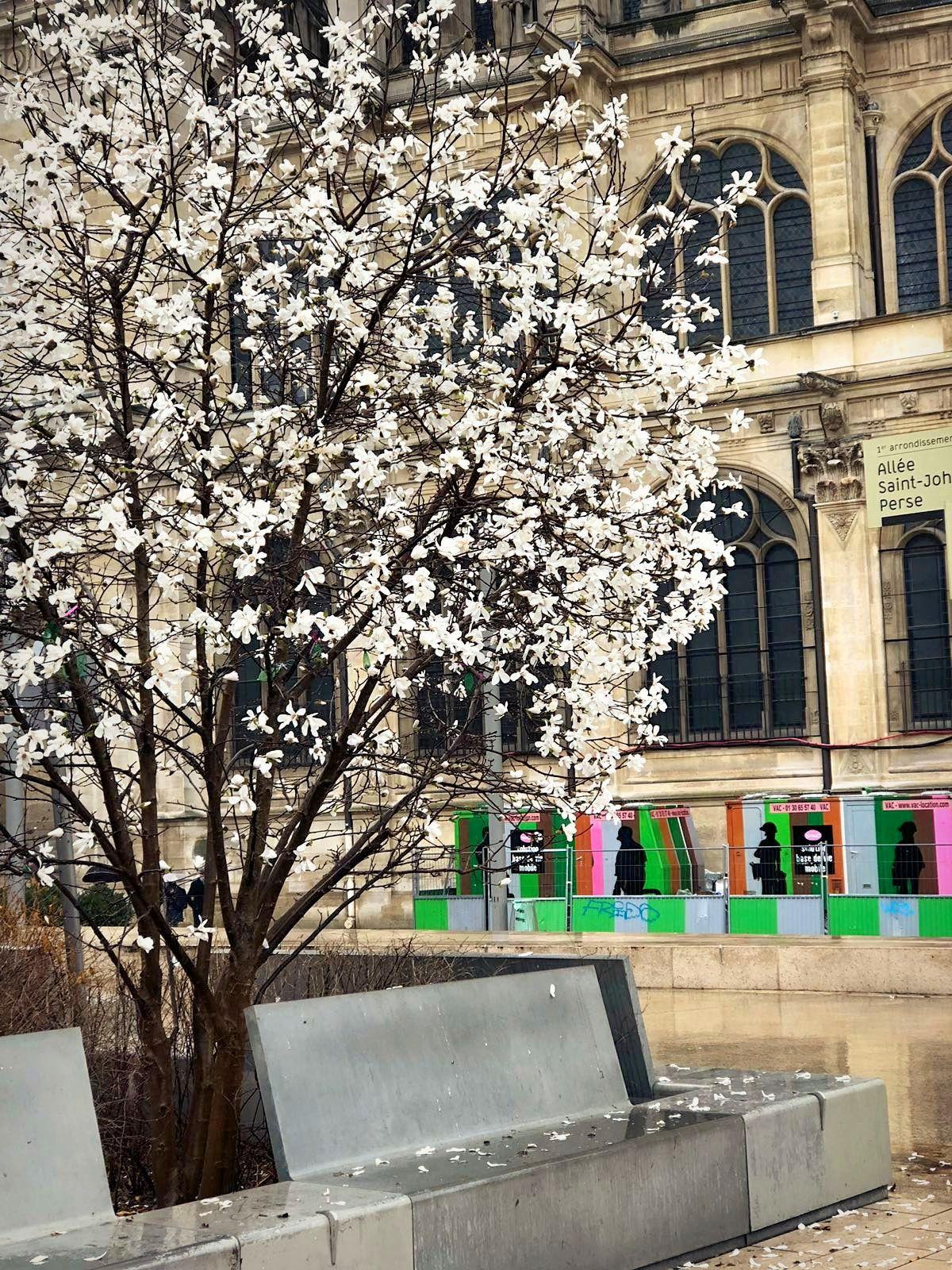 Balade parisienne... (1) Beaubourg, Forum des Halles