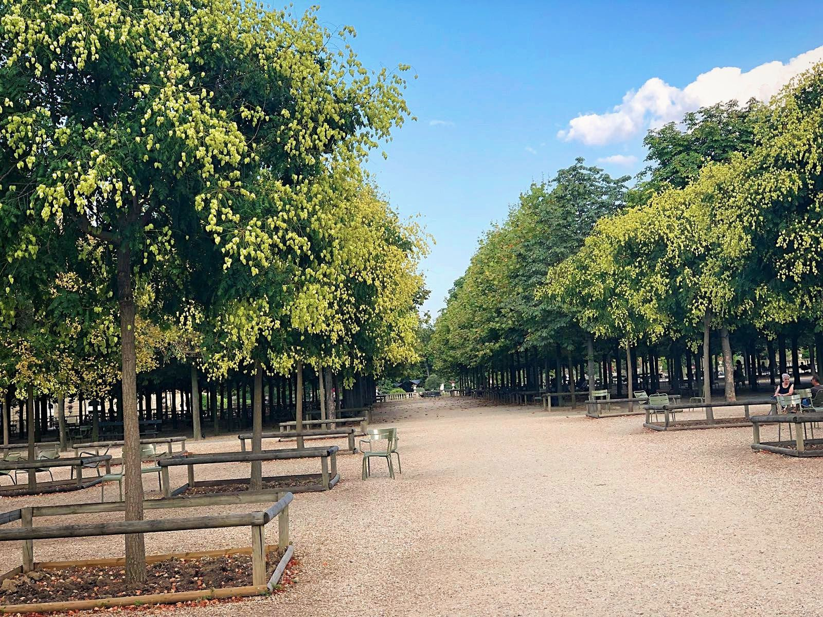 Promenade parisienne... Jardin du Luxembourg, 6ème arrondissement