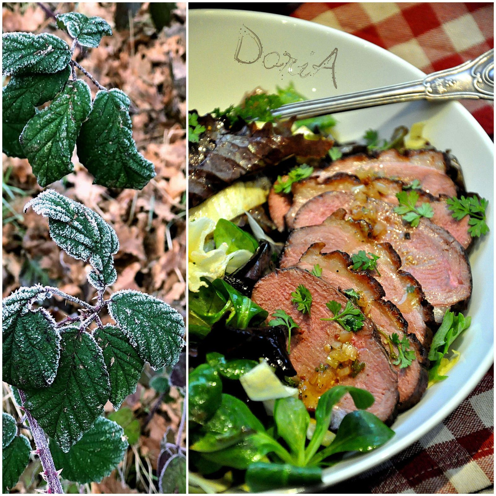 Salade de magret de canard, endives et tête de Moine