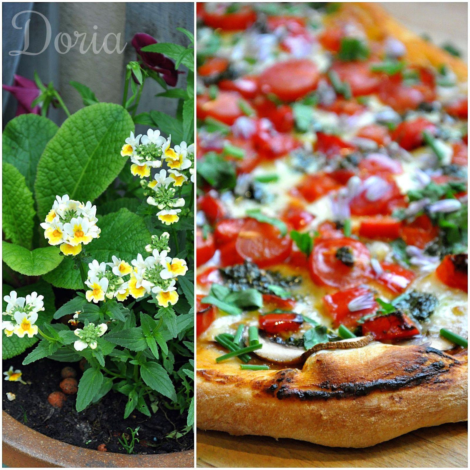 Pizza aux champignons, tomates cerises, mozzarella et herbes du jardin