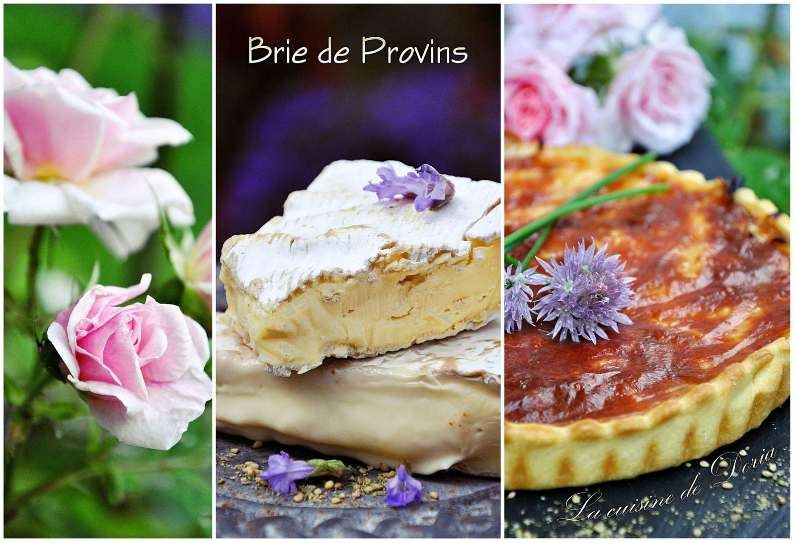 Tarte au Brie de Provins