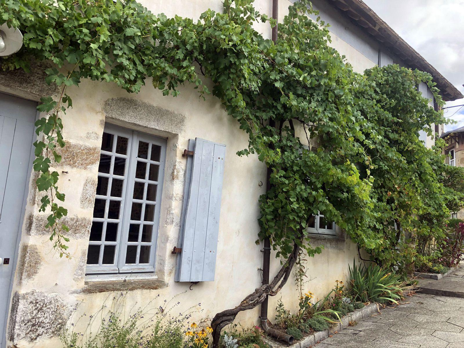 Road Trip, du Perche jusqu'en Bretagne... Saint-Cénéri-le-Gerei