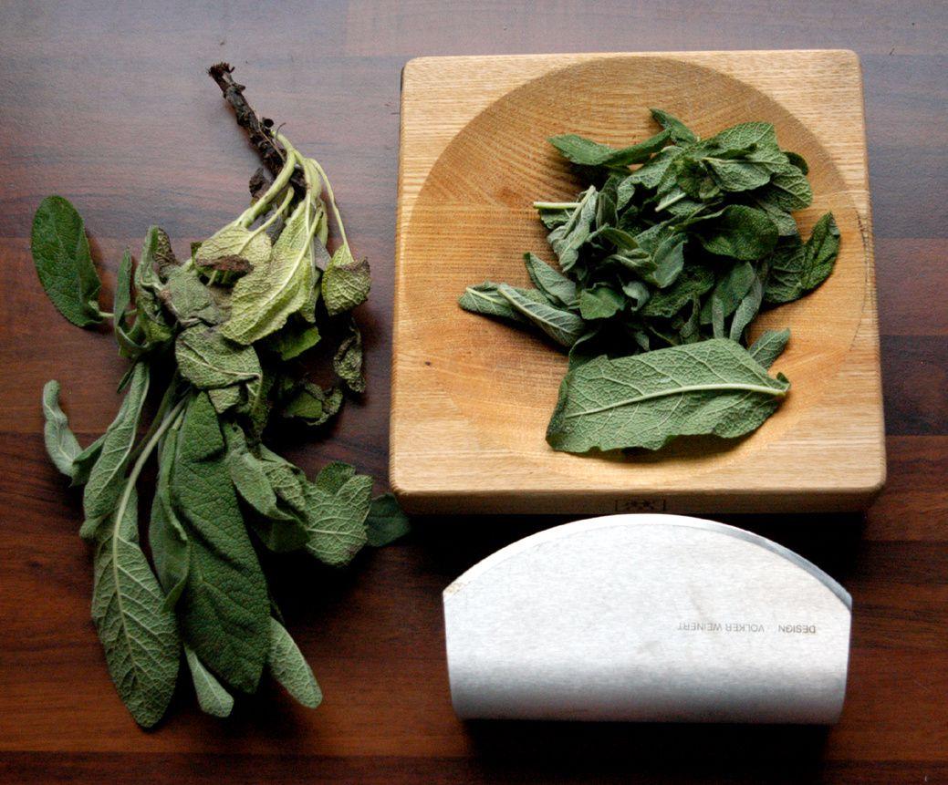 DIY: Kräuterauszug aus Olivenöl und Salbei