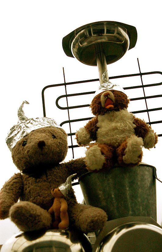 Herr Grätzman, Herr Bill und der kleine Herr Bär warten auf die Außeridischen