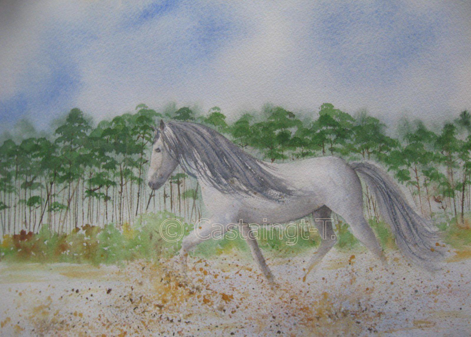 tableau aquarellé classique