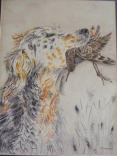 Vico chien de chasse_Mado_Aquarelle