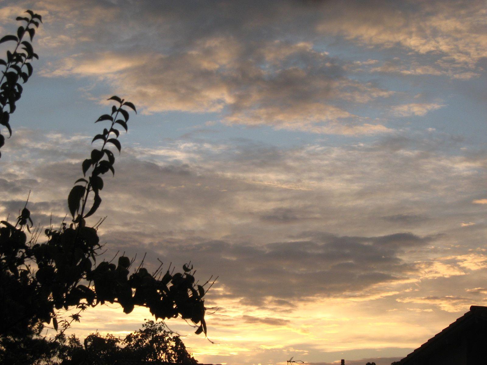 ciel du matin avant la pluie