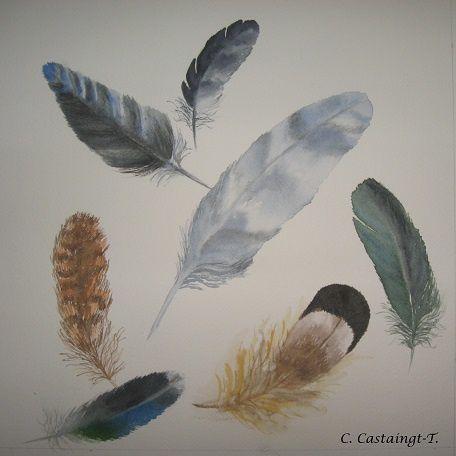 collection de plumes et de chapeaux_celine_aquarelle