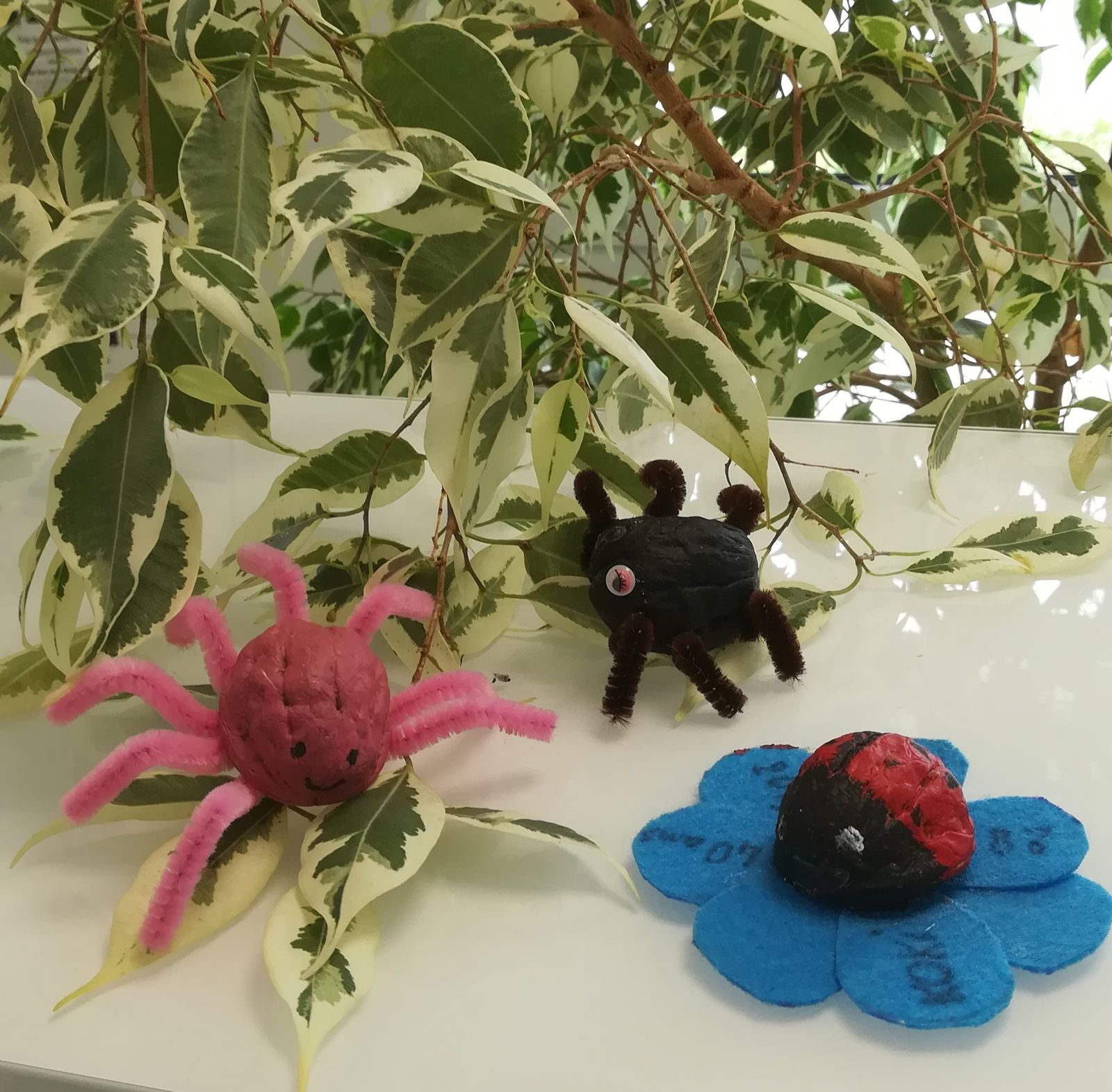 activite enfant maternelle avec coquilles de noix petits animaux