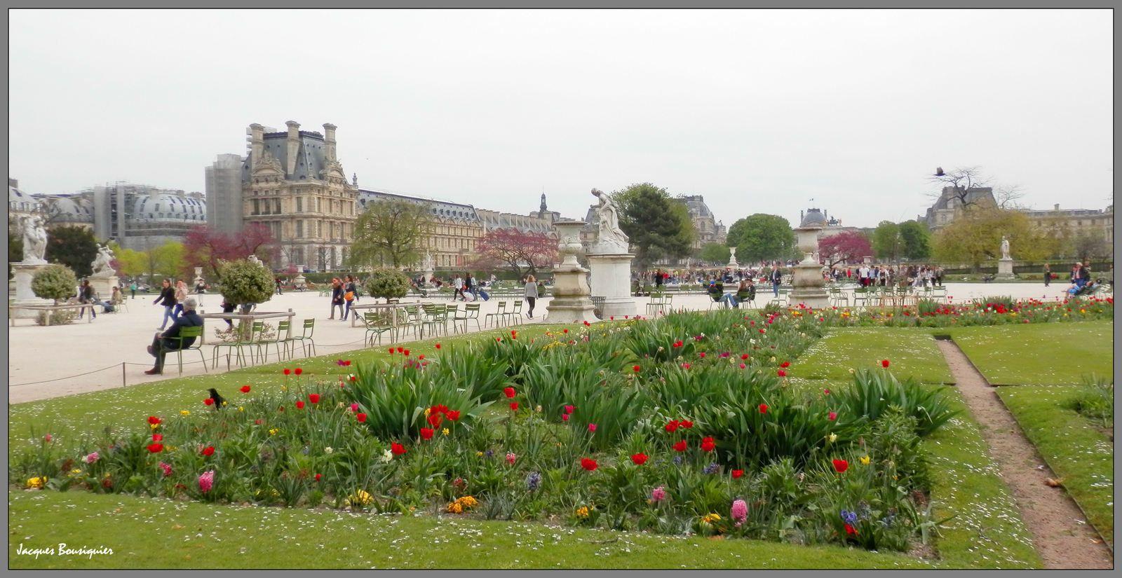Photos réalisées au Jardin des Tuileries le 31 mars 2014