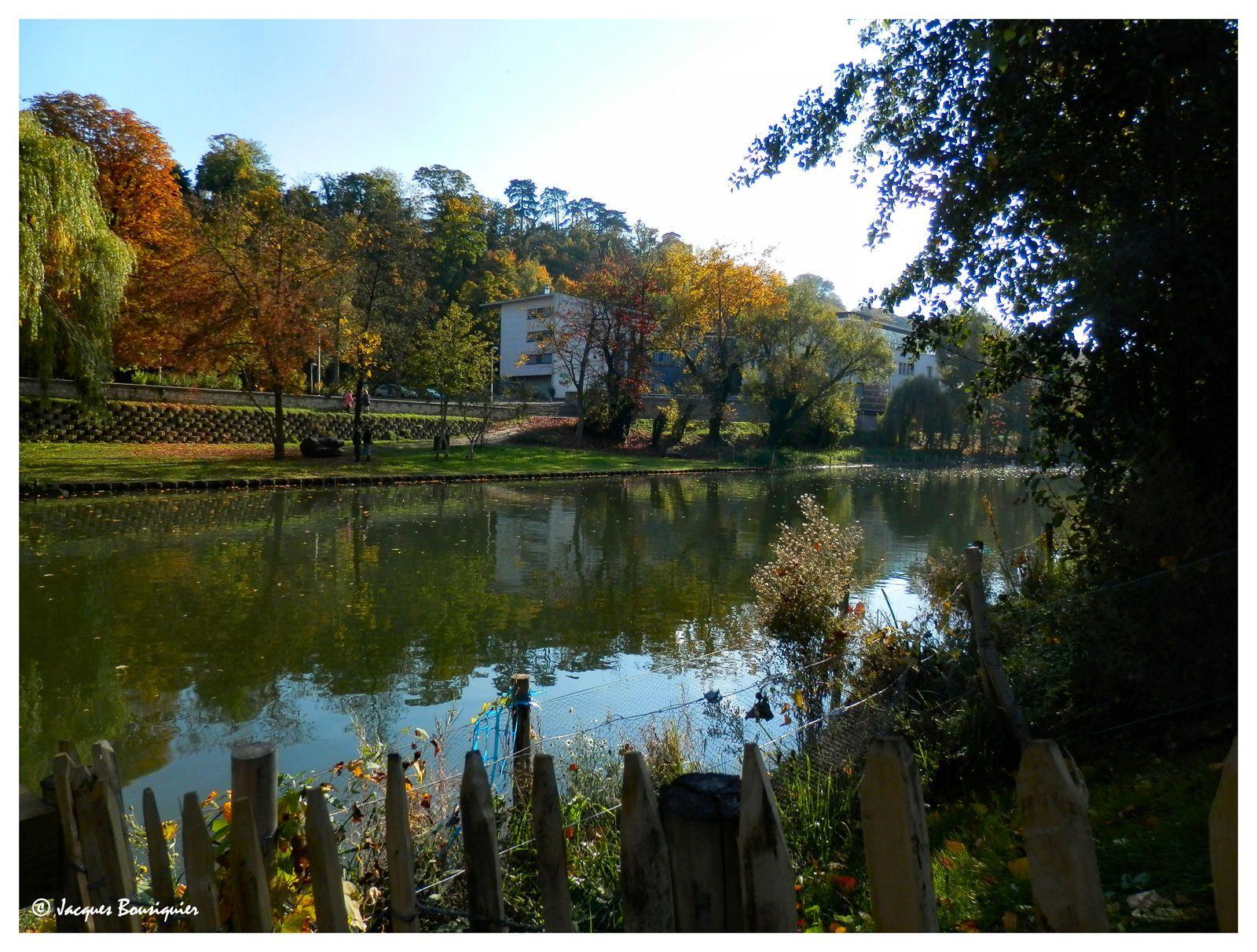 Balade au parc un jour d'automne...