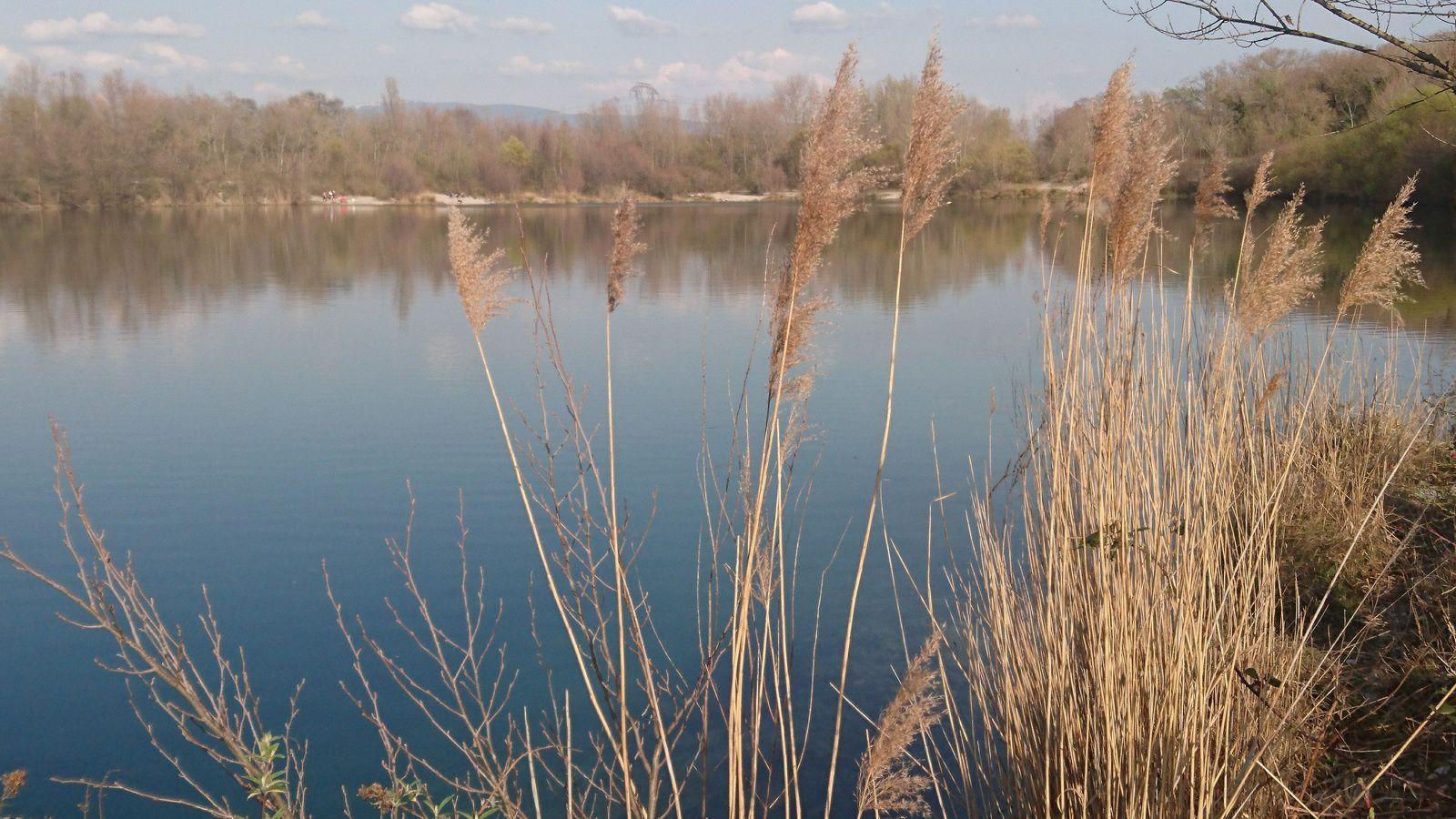 Lac des Freydieres