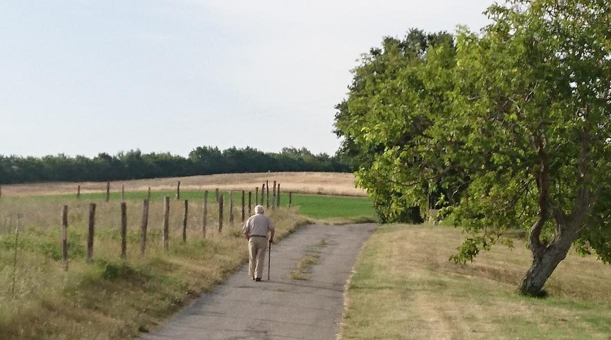 Mon Papa (98 ans) en promenade