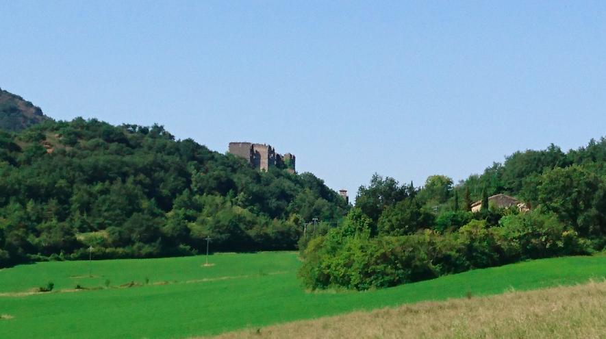 Ruines du château de Soyans