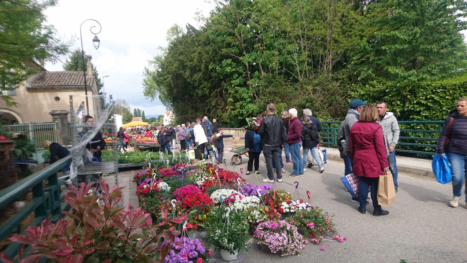 Le marché aux fleurs de Montvendre