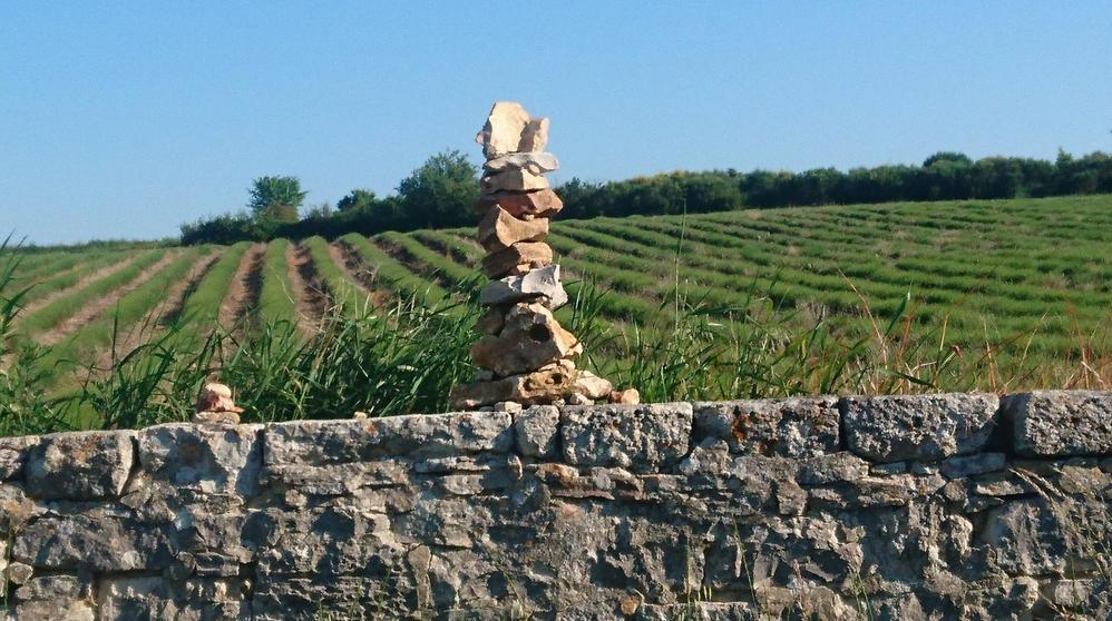 """CAP : boucle """"Sainte Croix à Lauze - Vachères"""""""