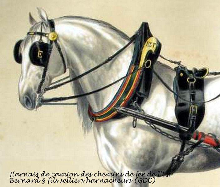 Harnais pour un cheval voiture 4 roues (suite)