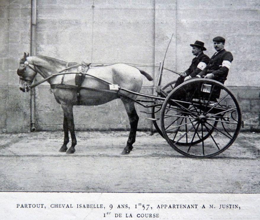 """Vainqueur du raid de la """"petite gironde"""" en 1903"""""""