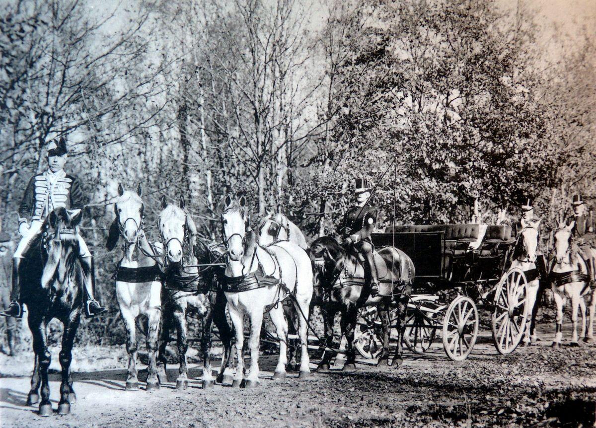 Char à bancs de chasse en poste à la Française lors d'une chasse à Rambouillet offerte par le comte Potocki au président Felix Faure