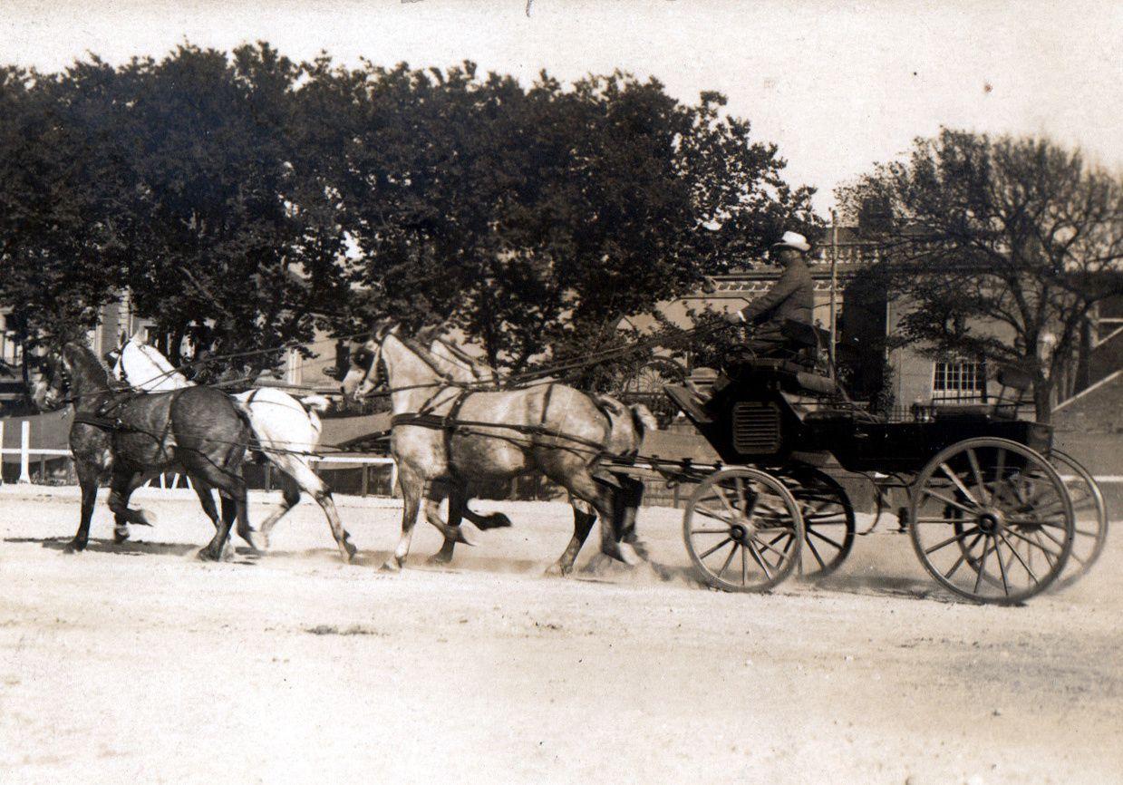 Attelage de chevaux Boulonnais (du type léger) appartenant Messieurs Paque et Meurant, épiciers en gros à Boulogne-sur-Mer photographié lors d'un concours.