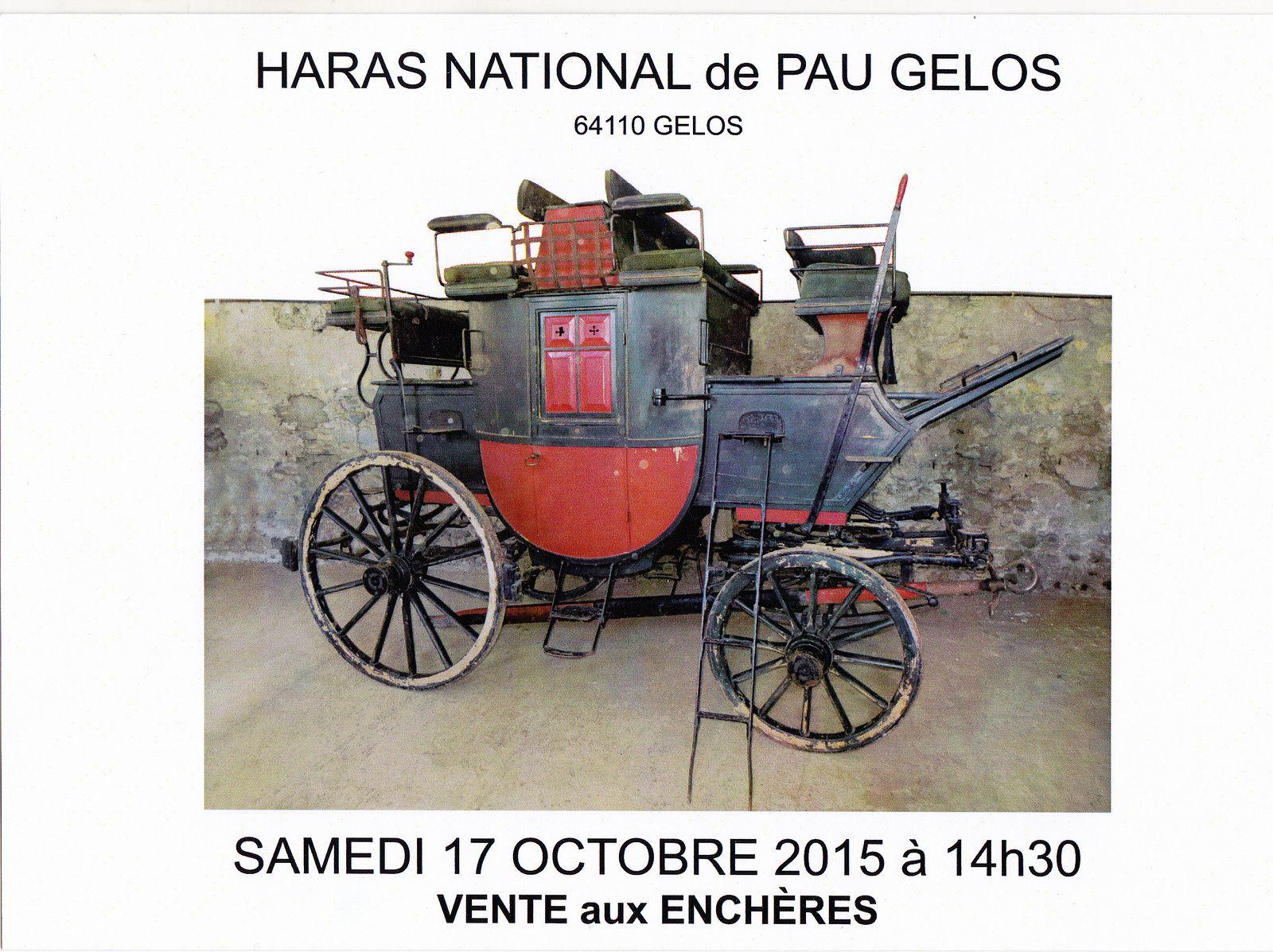 Vente aux enchères au Haras de Pau Gelos 17 Octobre 2015