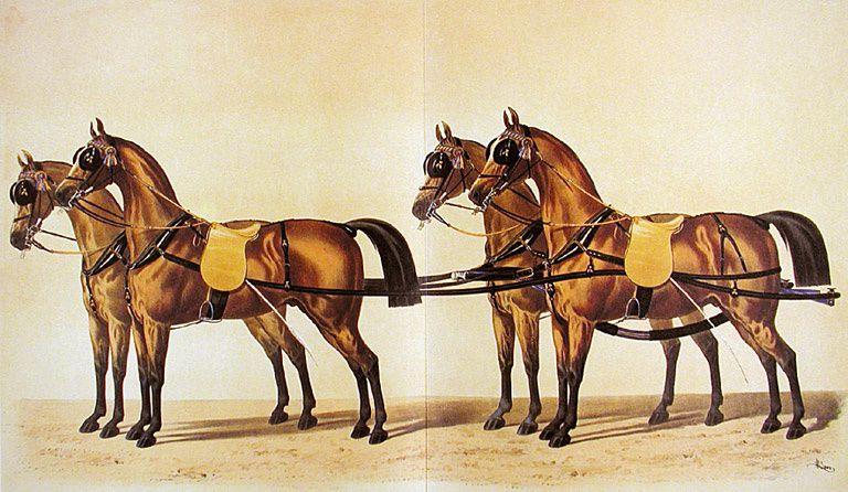 Harnais de d'Aumont. Léné, La sellerie française et étrangère, 1878.