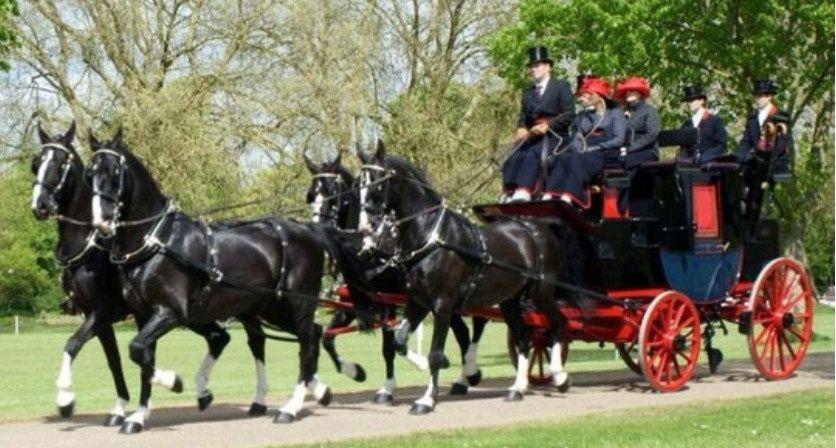 Le Coach régimentaire du Household cavalry regiment  mené par Danny Kendle
