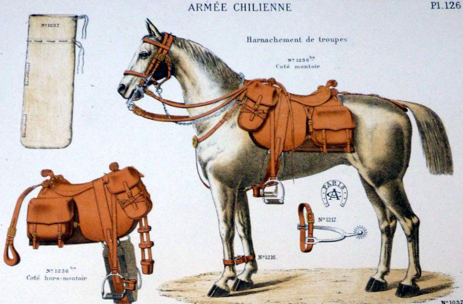 """La sellerie """"Alp. Camille jeune"""""""