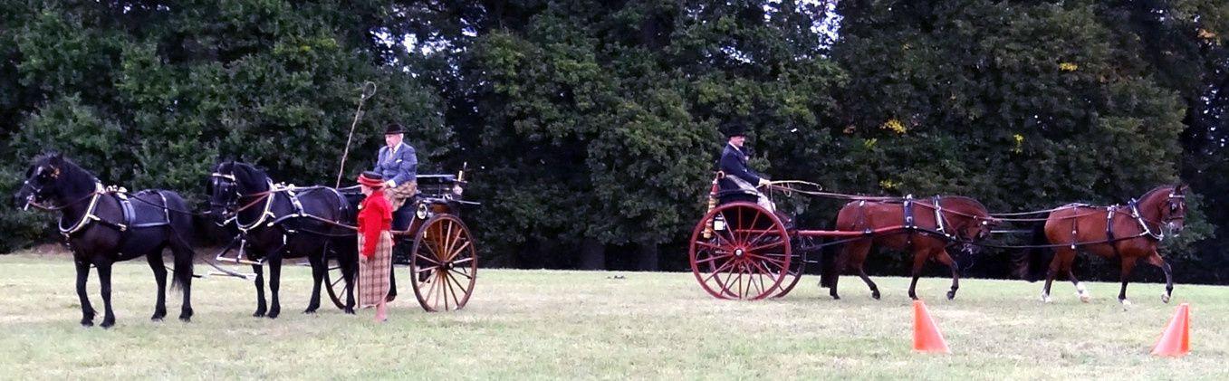 A la détente, équipage Matthys (B) – Mérens – Dog Cart et équipage Bodin – New Forest –Cabriolet Bourbonnais