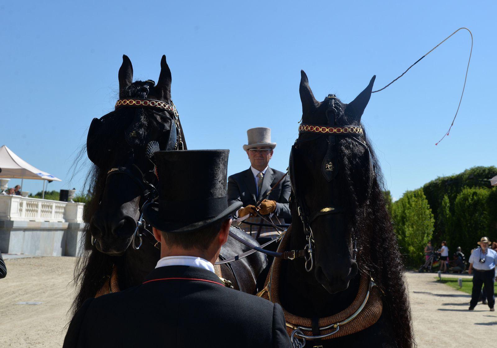 Venaria Reale 2017: Triomphe de la beauté et de l'élégance