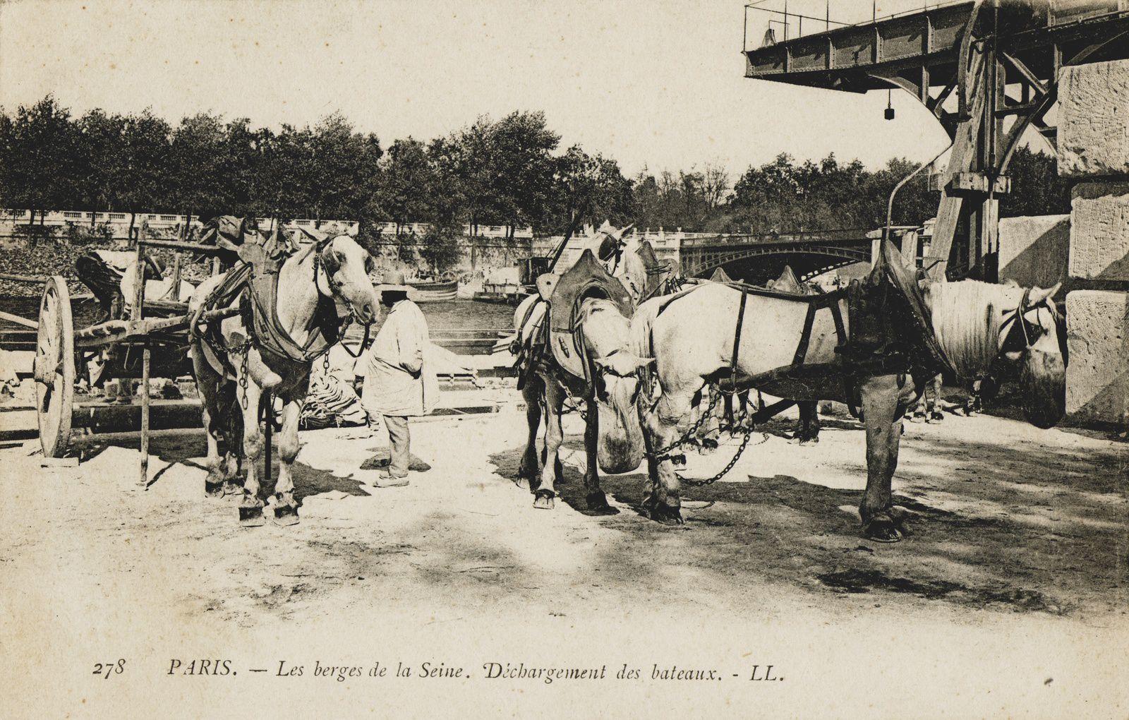 """""""Pierre qui roule"""" par Etienne Petitclerc"""