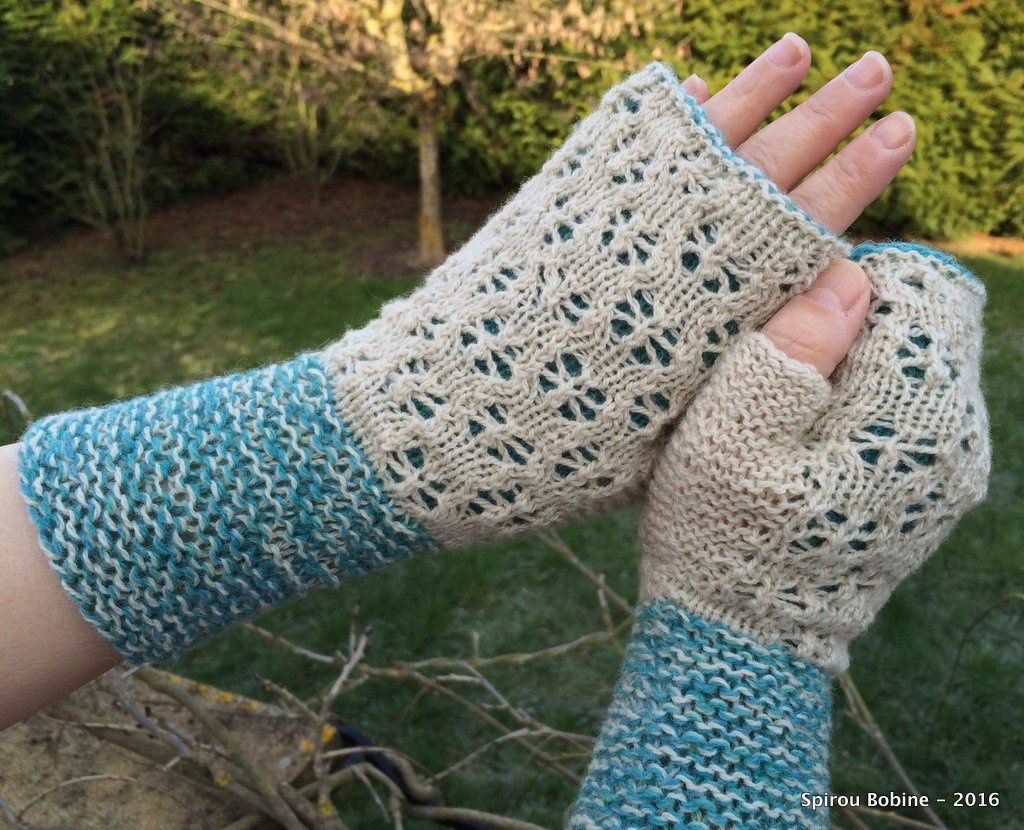 KAL Mitaines Reflets (Passion Tricot n°4)